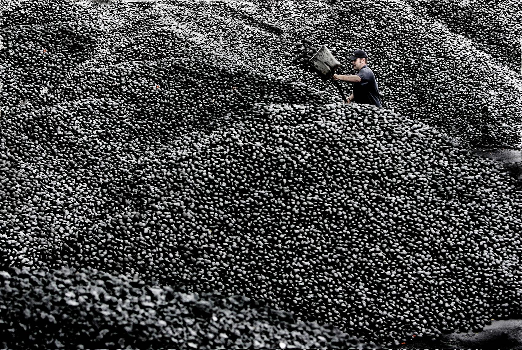 Coal yard in Yorkshire
